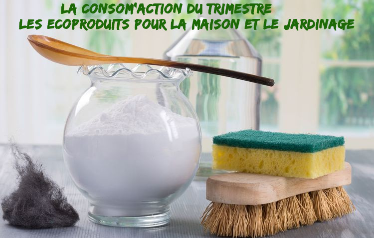La consom'action du trimestre